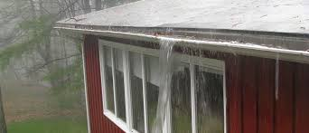 GUTTER CLEANING AND YOUR HYGIENE
